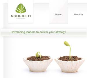 Ashfield Consulting